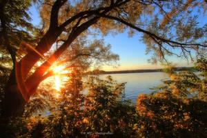 evening autumn colors at Tegeler lake by MT-Photografien