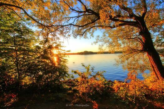 evening autumn colors at Tegeler lake 2