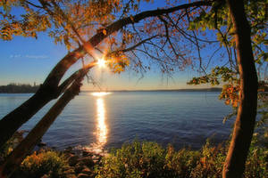 a beautiful autumn day is over by MT-Photografien