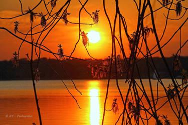 wonderful nature by MT-Photografien