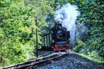 Ruegen narrow gauge railway by MT-Photografien