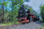 Ruegen narrow gauge railway 2 by MT-Photografien