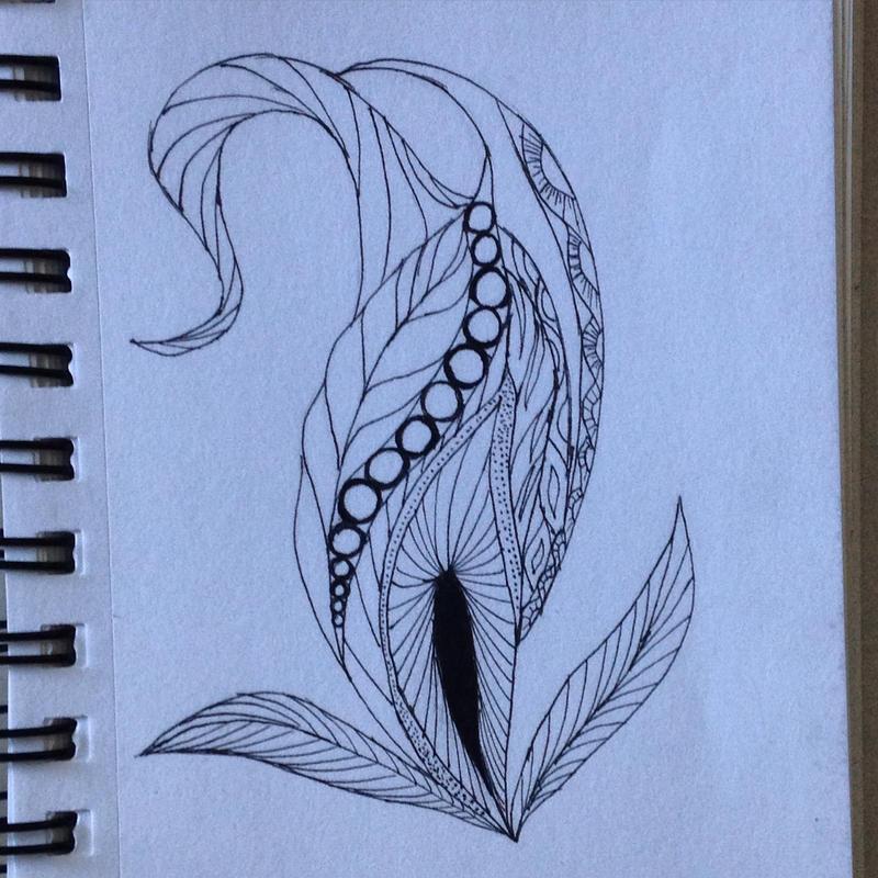 Seedling by dimora