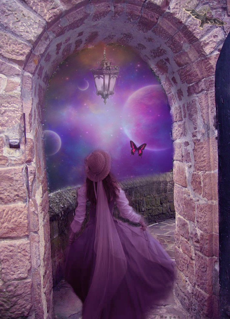 Chasing Butterflies by Megan824