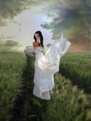Field of Dreams by Megan824