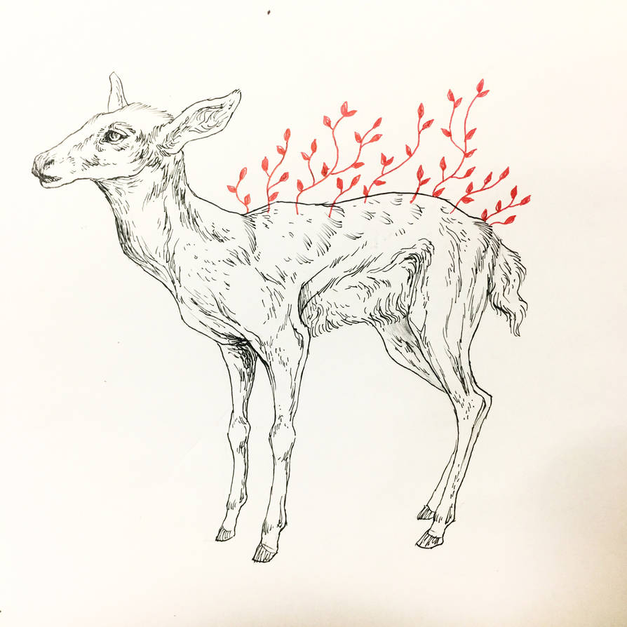 Fawn by Nukeshi