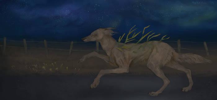 Night sprint by Nukeshi