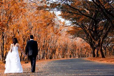 the Wedding by blixyklingi