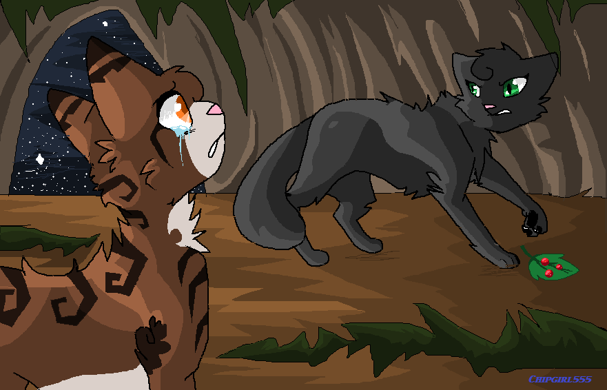 Leafpool and Hollyleaf's confrontation