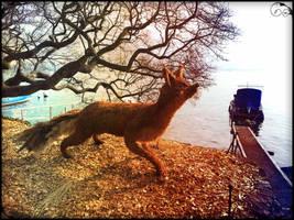 The Fox by YumeNoCora