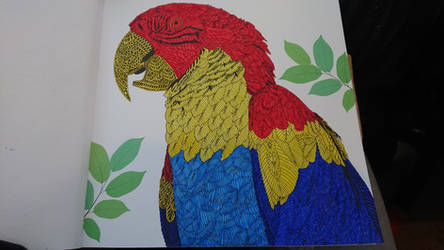 Aviary 3