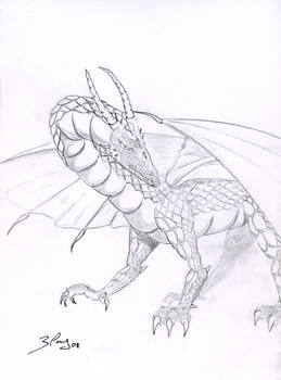 Dragon 2008 A