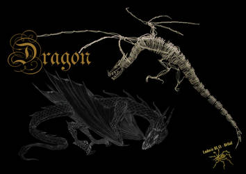 Dragon 2 by Belial28