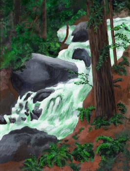 Spring Flood, Redwoods