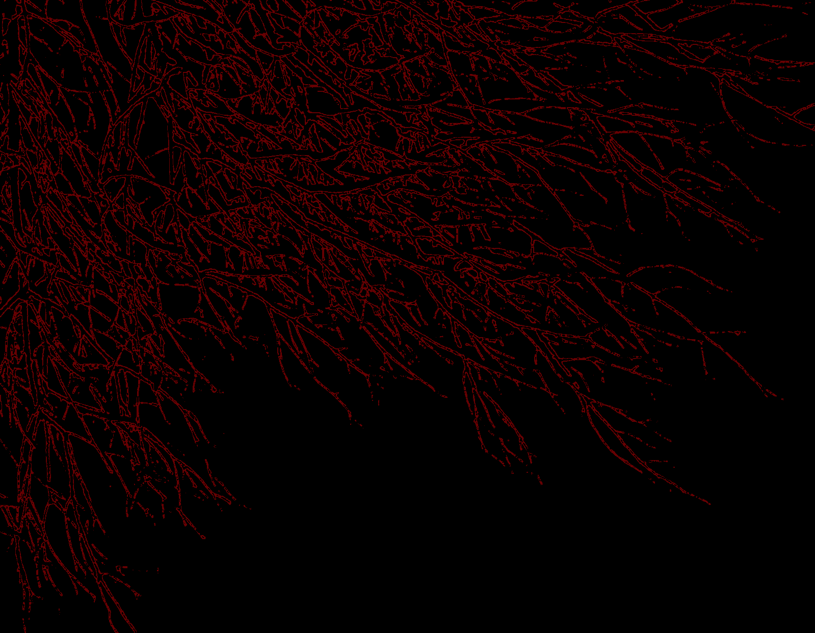 Dark Wallpaper Crimson