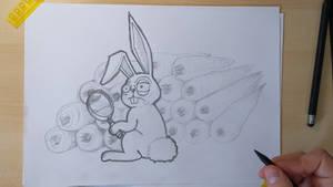 24 Carrot Bunny