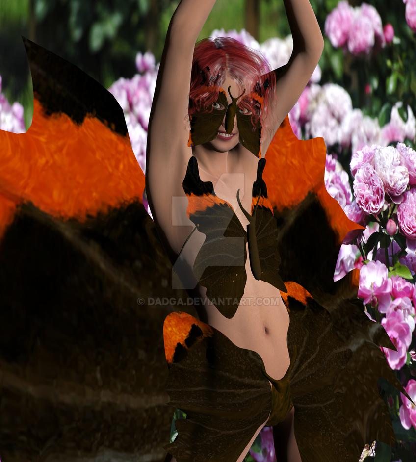 Papillon by dadga
