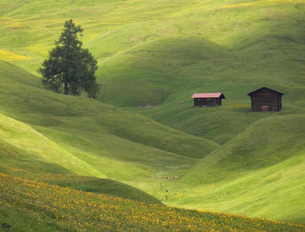 ...Alpe di Siusi 10... by eugi3