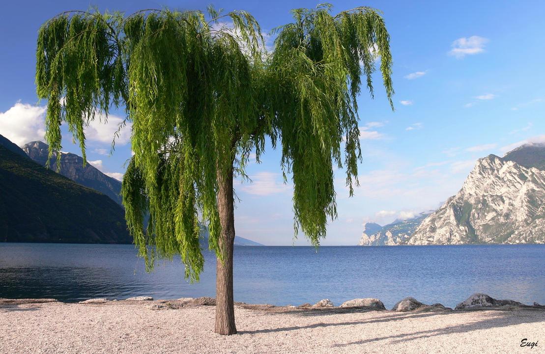 ...Lago di Garda 2... by eugi3