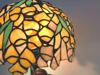 Flower lampshade closeup 2 by ioglass