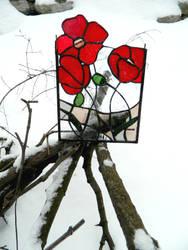 Poppies by ioglass