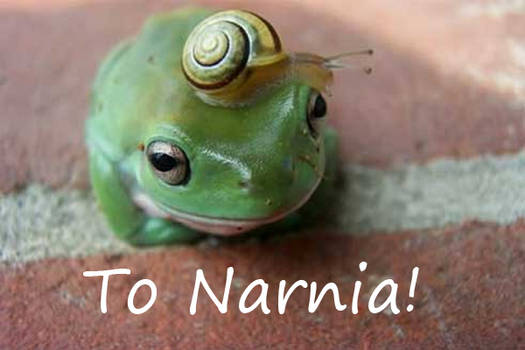 Frog and snail to narnia!
