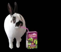 Bunny berry juice