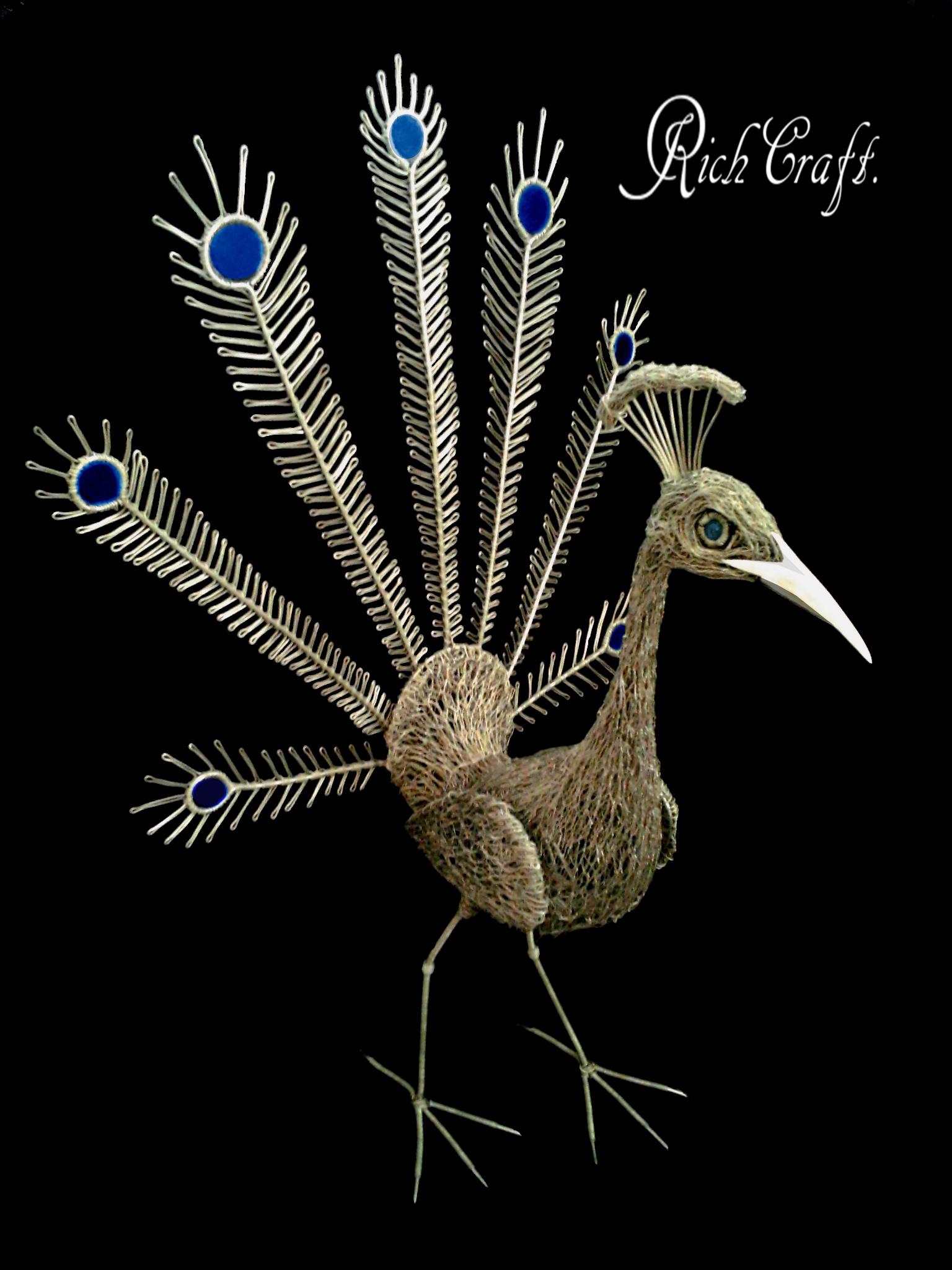 Peacock black by braindeadmystuff