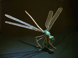 Dragonfly turquoise new3