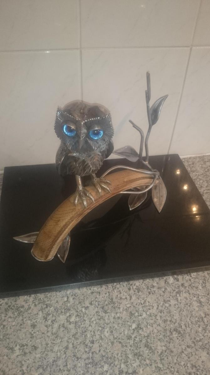 Little Owl.2015 update2 by braindeadmystuff