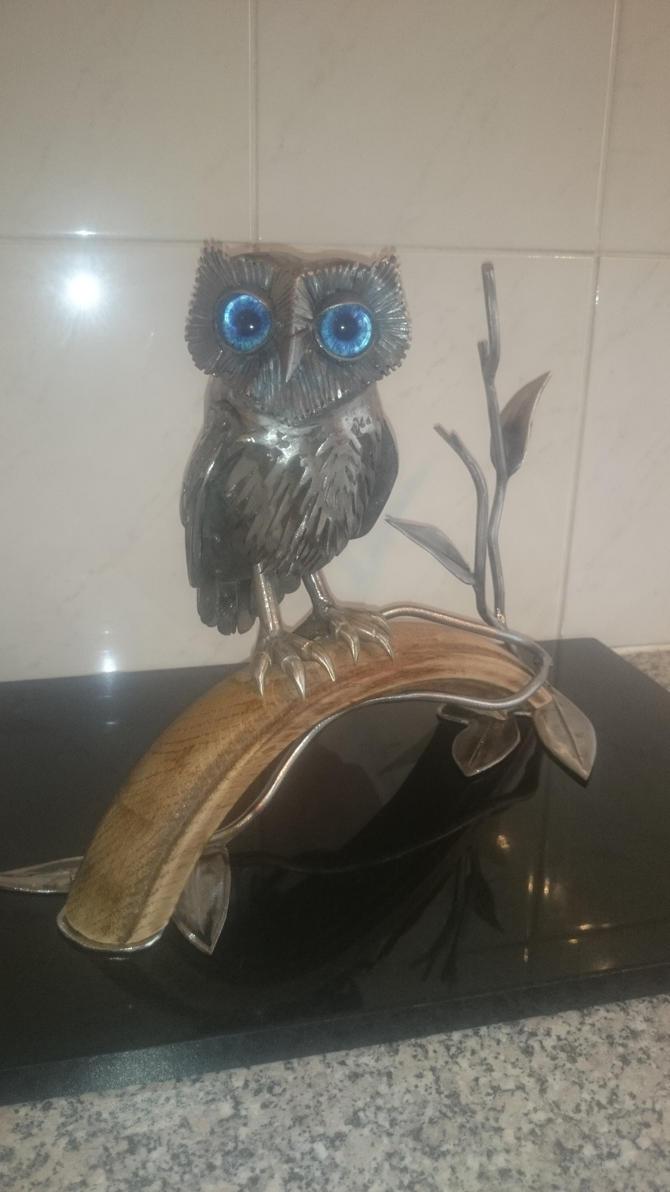 Little Owl.2015 update1 by braindeadmystuff