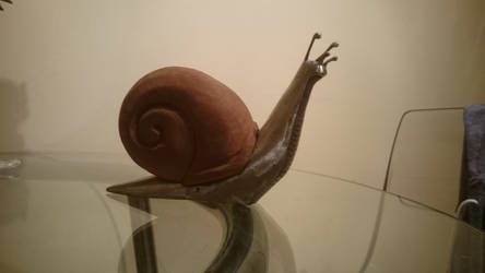 Sidney Stainless steel + hardwood Snail sculpture