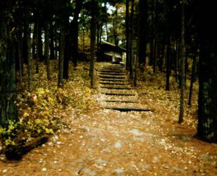 Cabin in the Woods by xSilverRavenWingsx
