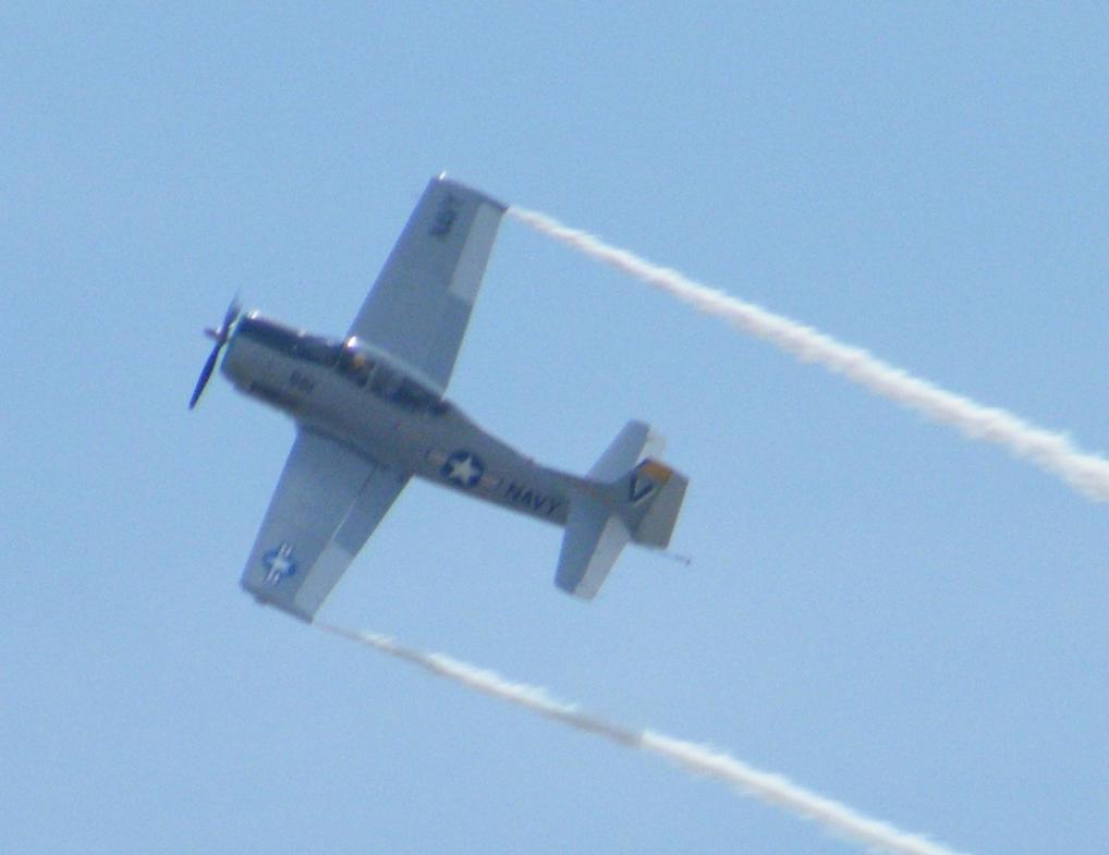 In flight fighter by wolf74145