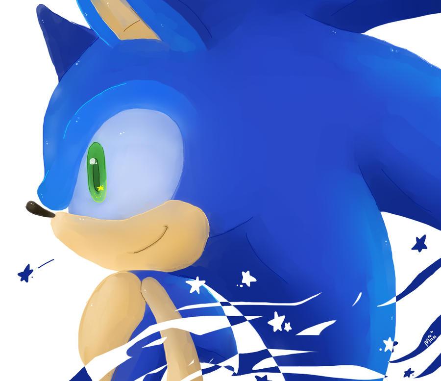 Sonic the Hedgehog by Miiukka