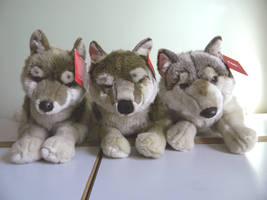 FAO Schwarz Wolf Evolution by SarityCreations