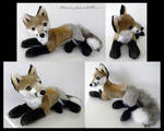 Proto Laying Red Fox