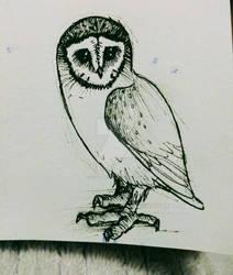 Fleece the Owl