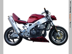 Honda CBR 900 Red Dragon right - STOCK