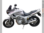 Yamaha TDM 850  left - STOCK