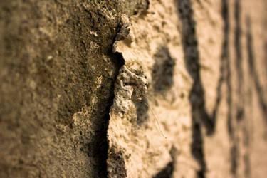 Wall by pettermyhr