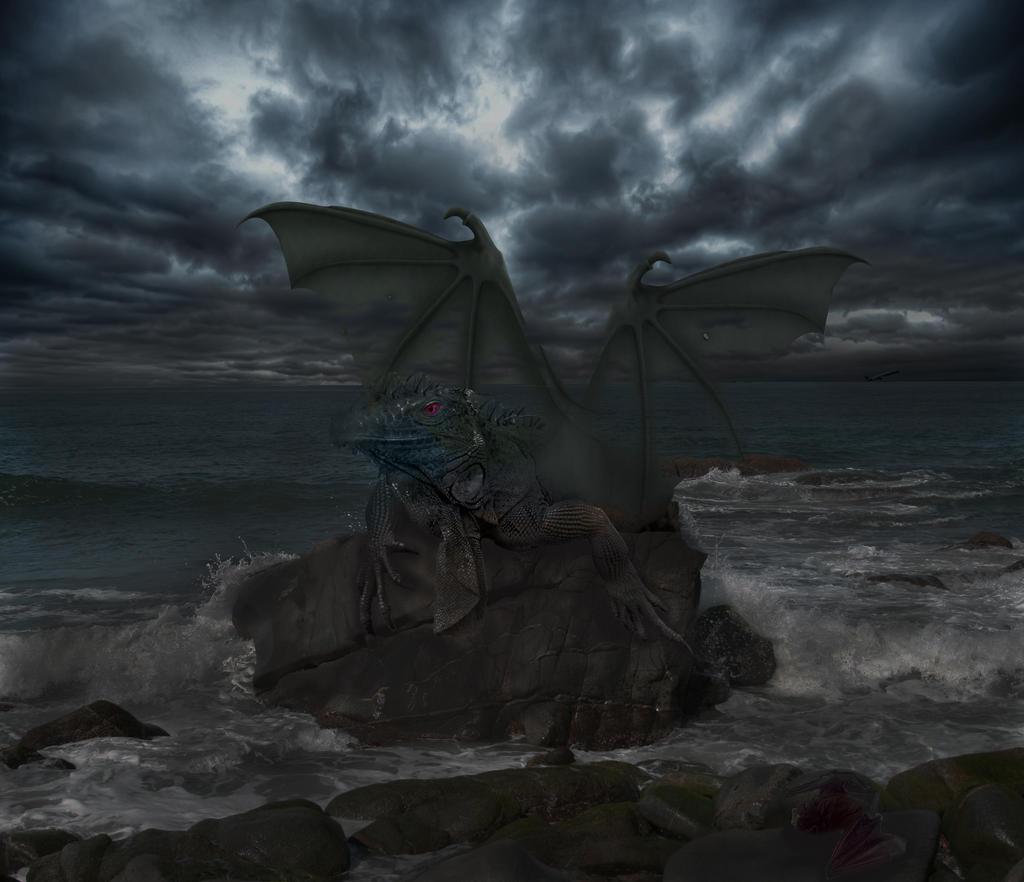 Night Dragon