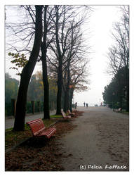 Autumn in Venice II