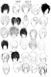 HAIR INDEX :revised