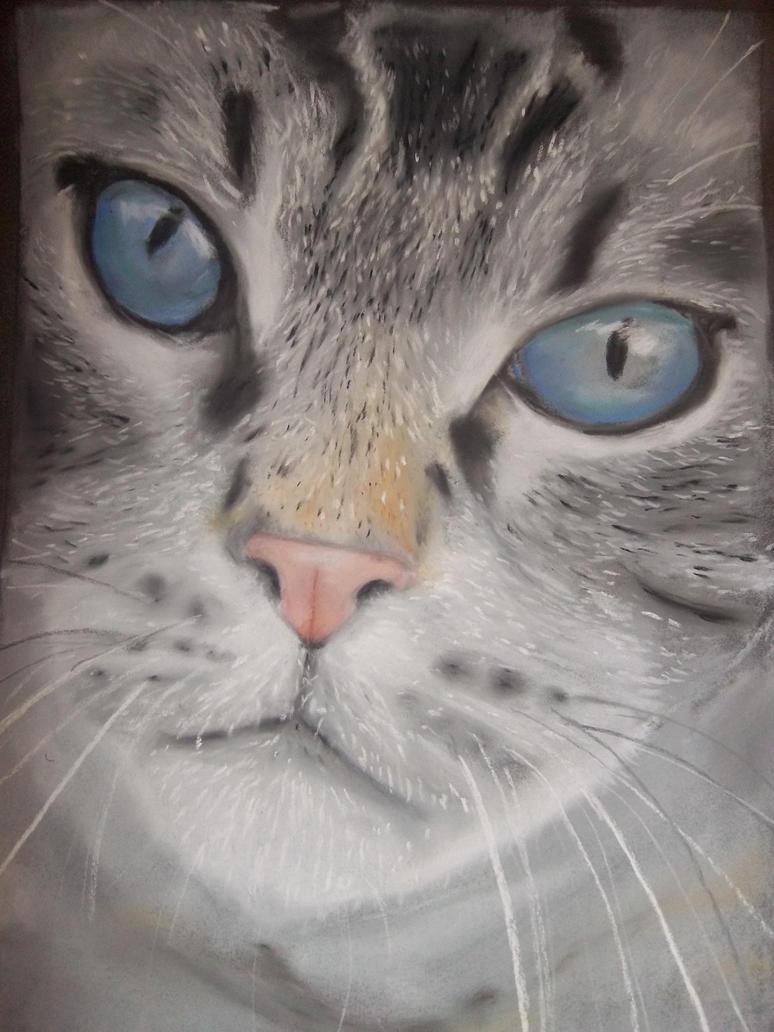 Blue eyes by Tritontopia