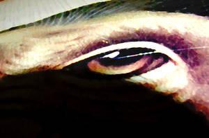 Painted Eye by Semety