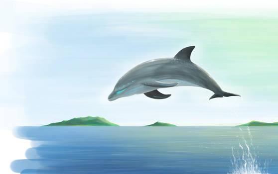 Dolphin Shape