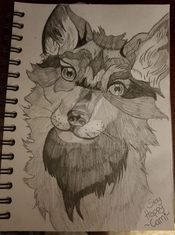 Happy Fox by BuwanAnsu