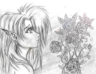My Ten Roses.. by kawaiitas