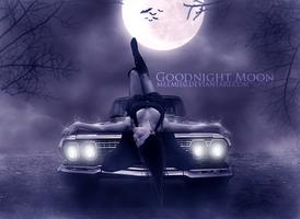 Goodnight Moon by MeemieArt